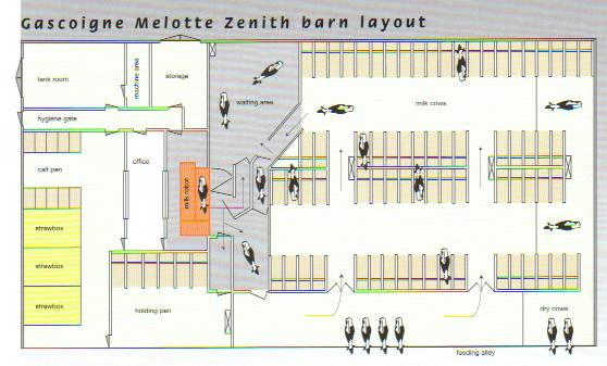 Layout Of Gm Libery Automatic Milking Systems From