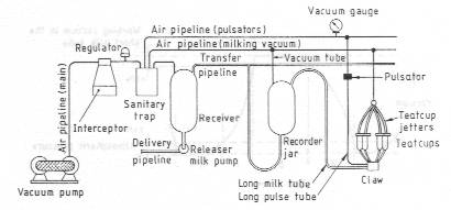 Schematic layout of a recorder jar milking system